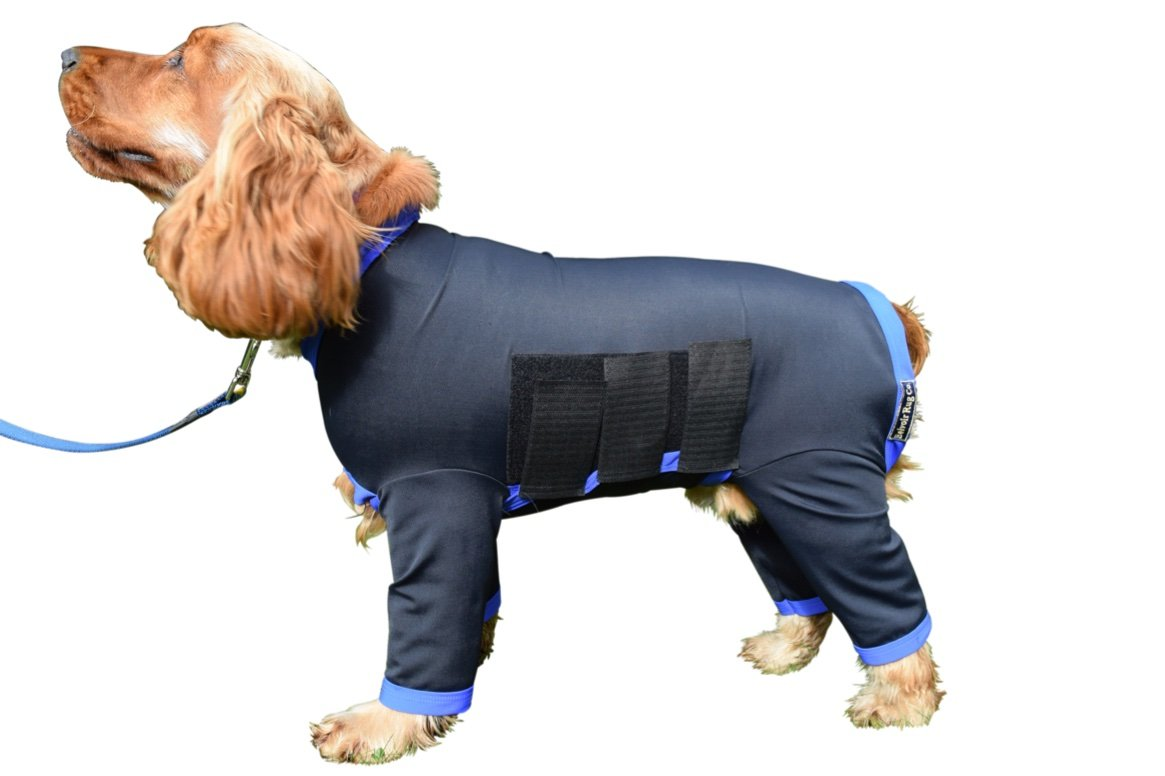 2XL (26.5\ Belvoir Rug Company Dog Onesie All in One Dog Cover Coat in Nylon Lycra For Dirty Dogs, Shedding or After Surgery Black with Turquoise Binding (2XL (26.5  Collar Tail for dogs 25 -28 ))