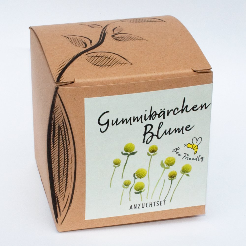 Geschenk-Anzuchtset Gummibärchenblume (Apfelduftblume) Naturkraftwerk e. U.