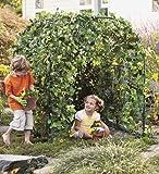 "Backyard Gardenfort Kit Includes Frame Seeds and Tarp 58""L x 58""W x 48""H"