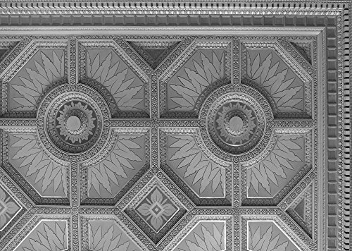 24 x 36 B&W Giclee Print of Ceiling detail at the Texarkana U.S. Post Office and Federal Building 2013 Highsmith 07a