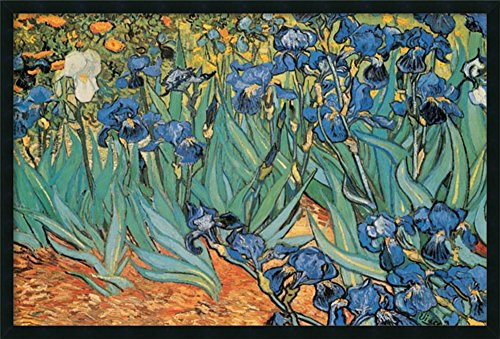 Framed Art Print, 'Garden Of Irises' by Vincent van Gogh: Outer Size 37 x 25