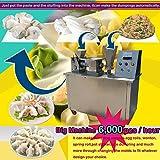 TX 6000pcs/h 100mm automatic Dumpling machine