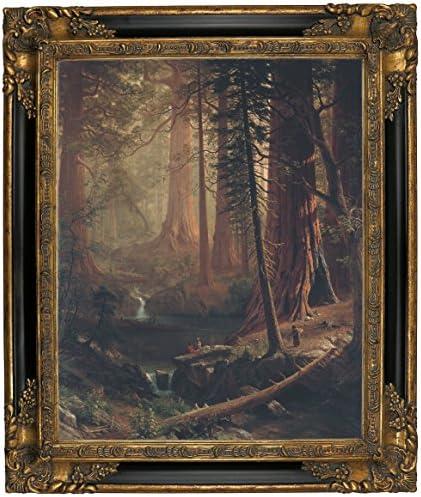 Historic Art Gallery Giant Redwood Trees of California 1874