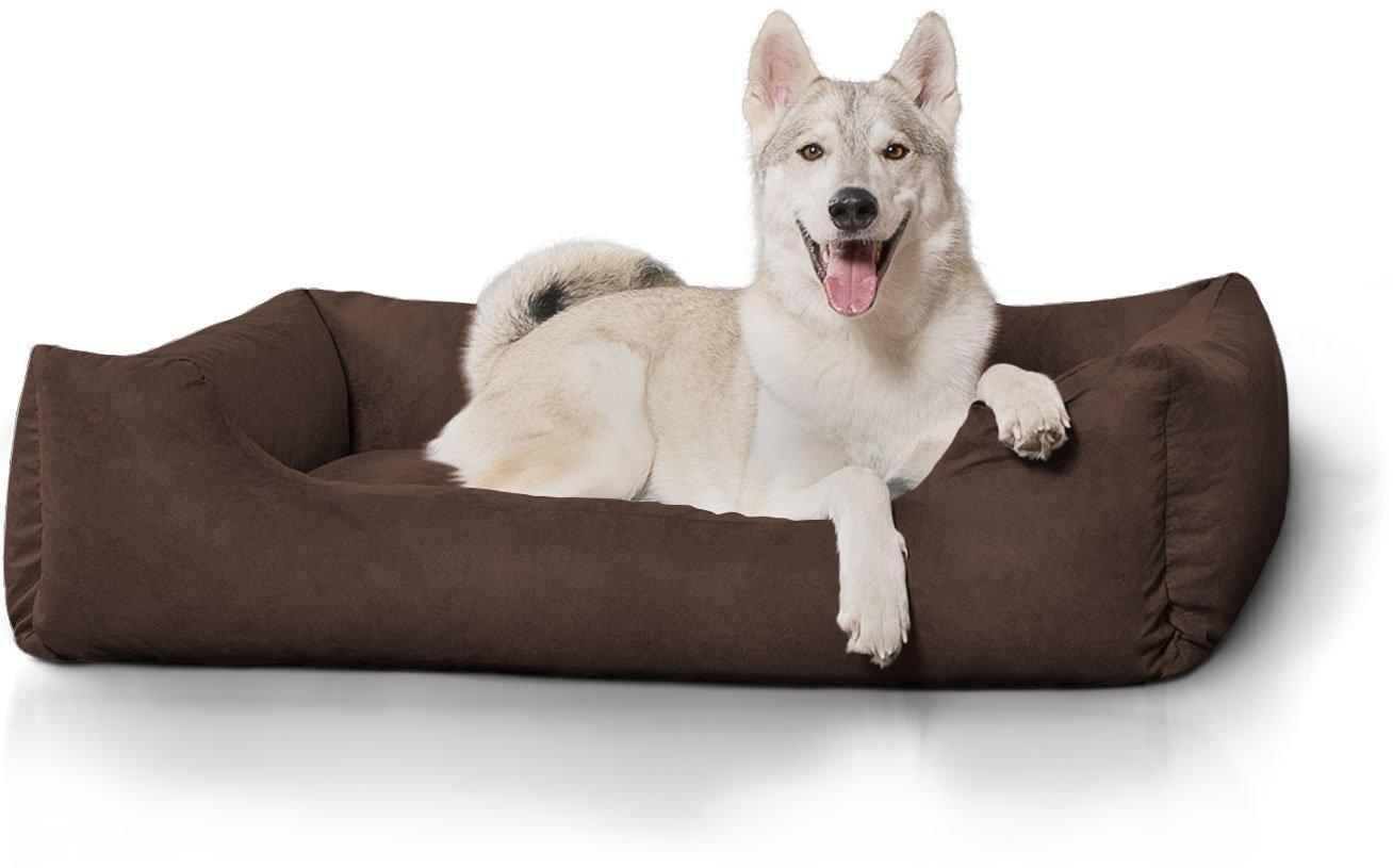 Knuffelwuff panier chien, lit pour chien, coussin, corbeille pour chien Dreamline, noir XXL grande taille 155 x 105cm AMZBOLLE-11