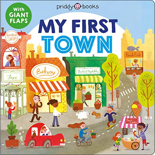 My First Places: My First Town: A flap book