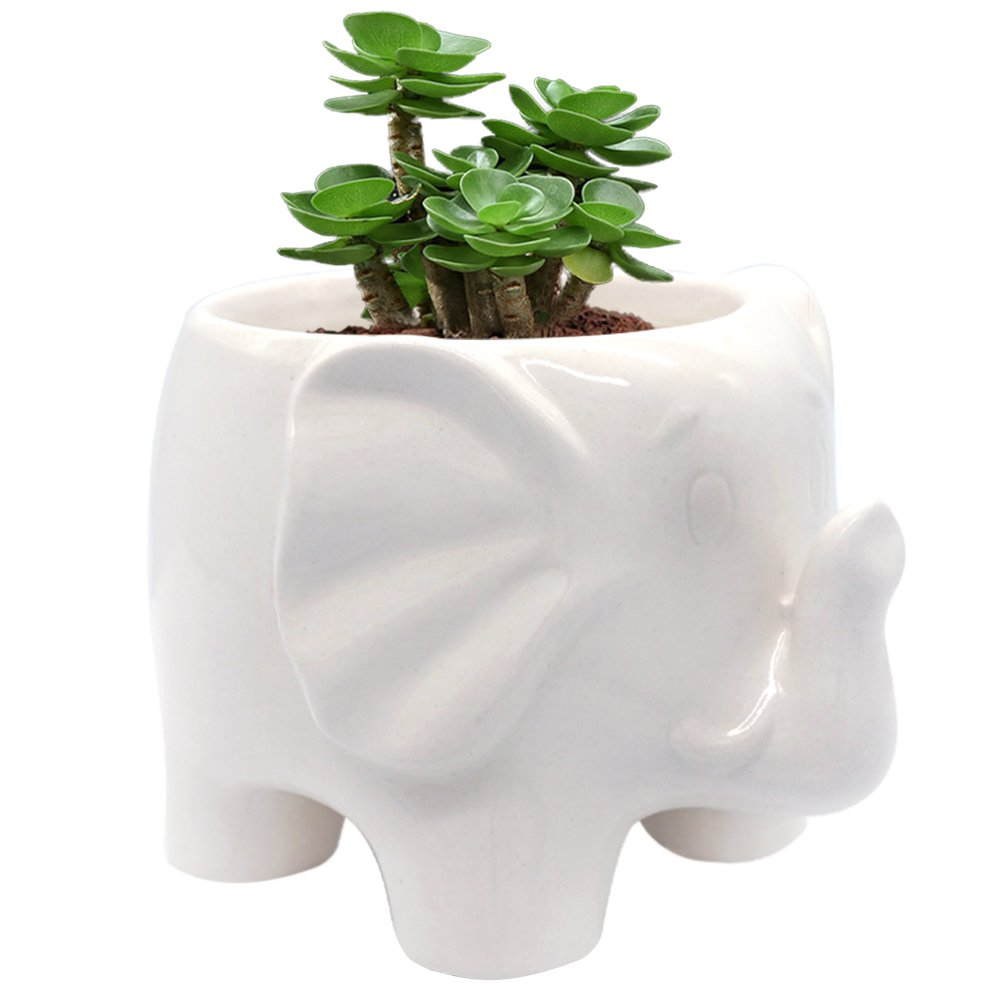 GeLive White Elephant Succulent Planter, Ceramic Plant Pot, Window Box, Animal Decor with Draining Hole, Foot Hollow, Retains Moisture by GeLive