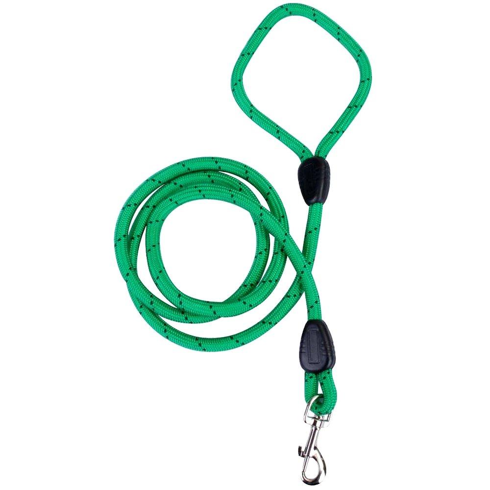 Promobo -Laisse Chien 150cm Nylon Epais Poignée et Attache Collier Clips Vert Fluo
