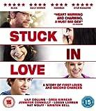 Stuck in Love [Blu-ray]
