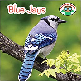 Blue Jays (Backyard Safari)