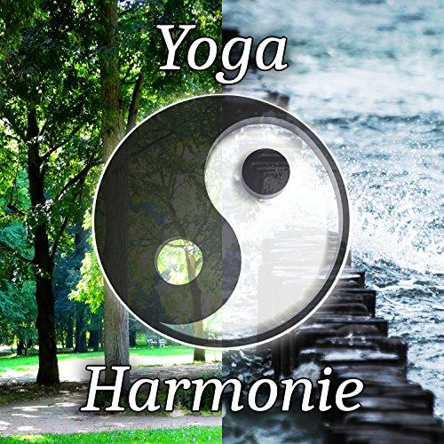 Yoga harmonie zen cours pour d butants et experts 101 for Force interieur