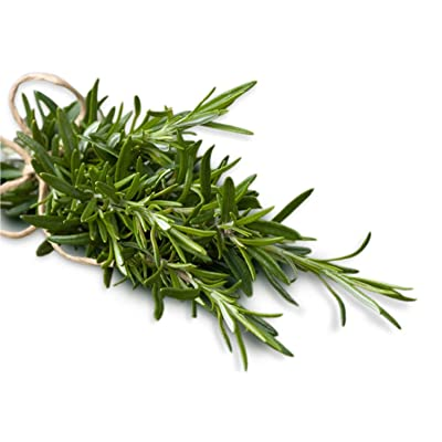 Herb Seeds Rosemary Seeds UPC 600188195606 + 1 Plant Marker (75): Kitchen & Dining