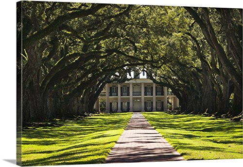 Walter Bibikow Premium Thick-Wrap Canvas Wall Art Print entitled Louisiana, Vacherie. Oak Alley Plantation, antibellum mansion (Classic Oak Canopy)