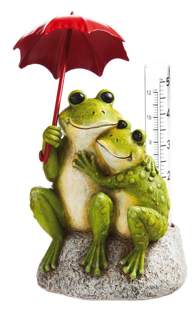 Frog with Rain Gauge