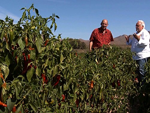 (Chili Peppers: Fruit of New Mexico)