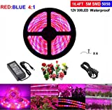 Topled Light® LED Plant Grow Strip Light with Power Adapter,Full Spectrum SMD 5050 Red Blue 4:1 Rope Light for Aquarium Greenhouse Hydroponic Pant Garden Flowers Veg Grow Light (5M) For Sale