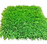 All Season Pro - Synthetic Grass for Outdoor Use - Artificial Turf Safe for Pets (25' x 15')