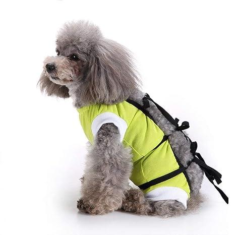 Goodup Chaleco quirúrgico Perros, Gatos, Perros, Verano, Abdomen, Enfermedad, protección