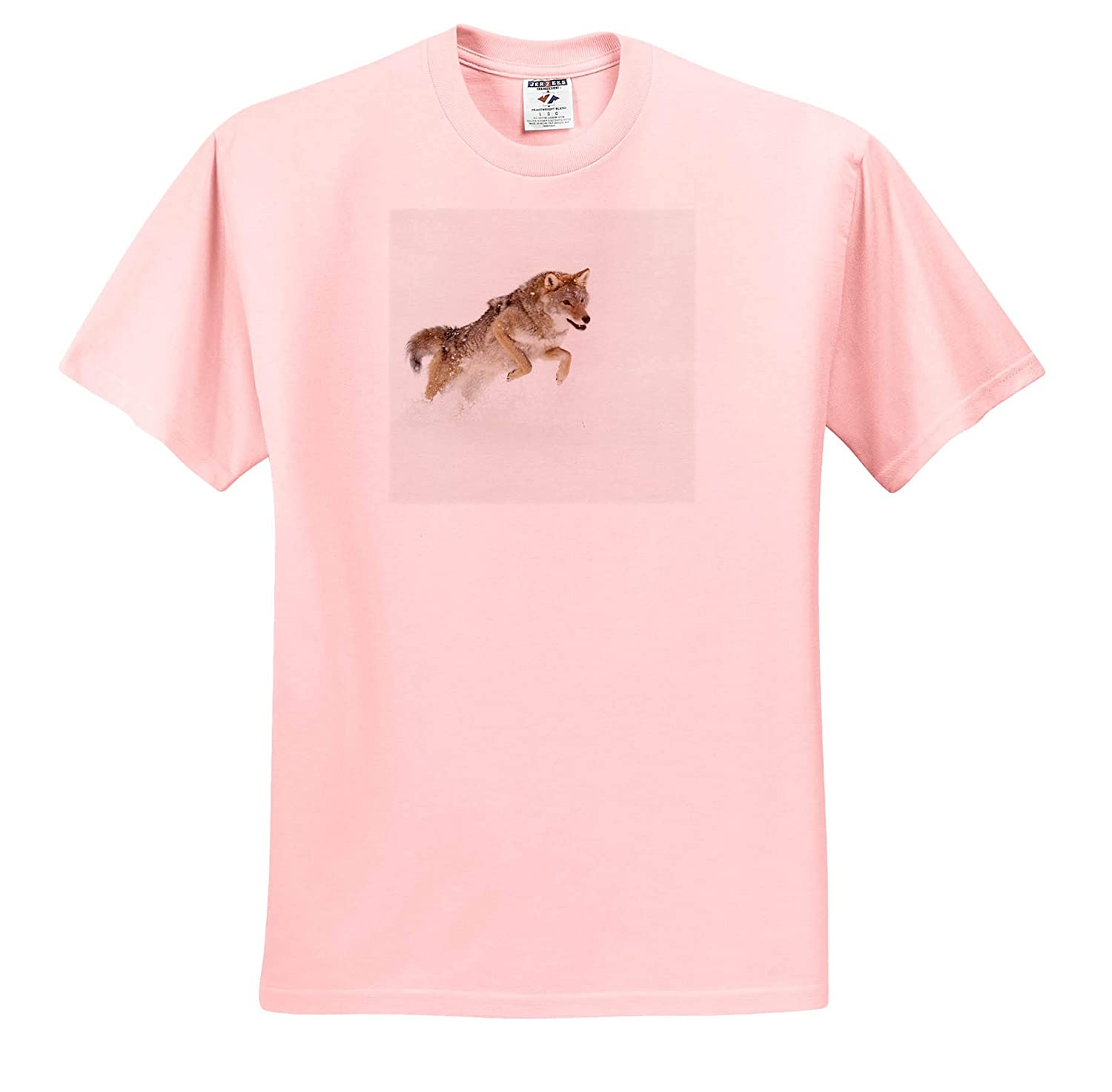 Captive Coyote in Snow Adult T-Shirt XL Coyote ts/_314918 Montana 3dRose Danita Delimont