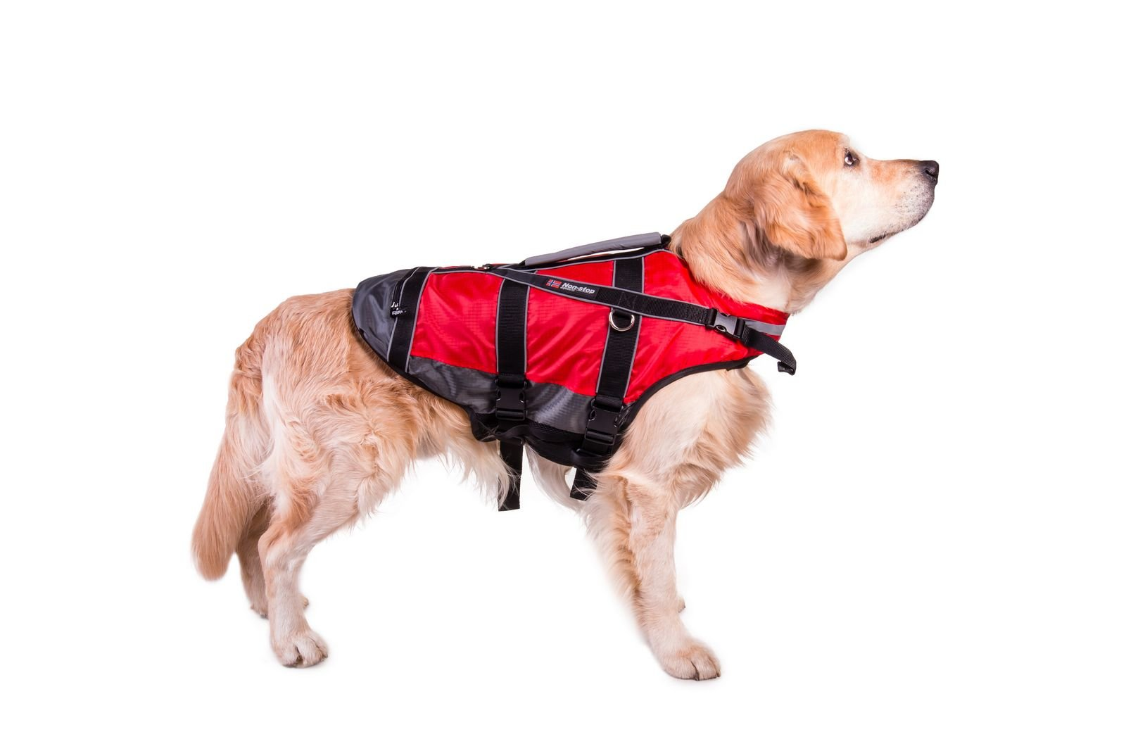 Non-stop dogwear ''Safe Life Flotation Vest Jacket With Professional Human Grade Material & Safety Handle (XL) by Non-stop dogwear