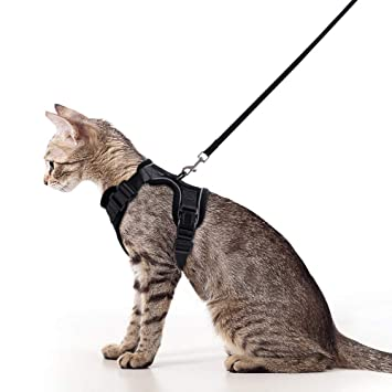 Rabbitgoo - Juego de arnés y correa para gatos, a prueba de escape ...