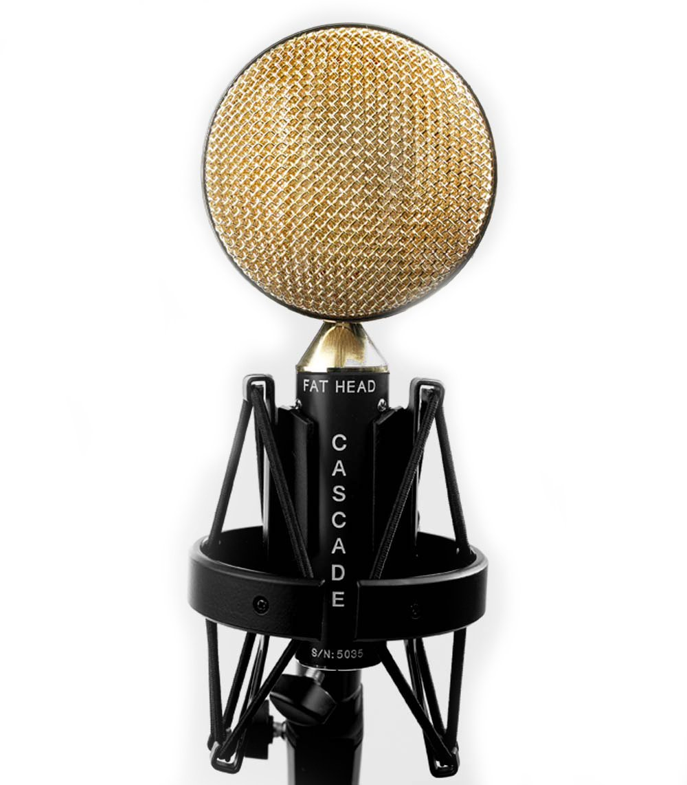 Cascade Microphones FAT HEAD - Black/Gold-Ribbon Microphone