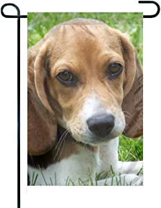 "FEDDIY Garden Flag Holiday Decoration Double Sided Cute Beagle Puppy Flag 12.5"" x 18"""