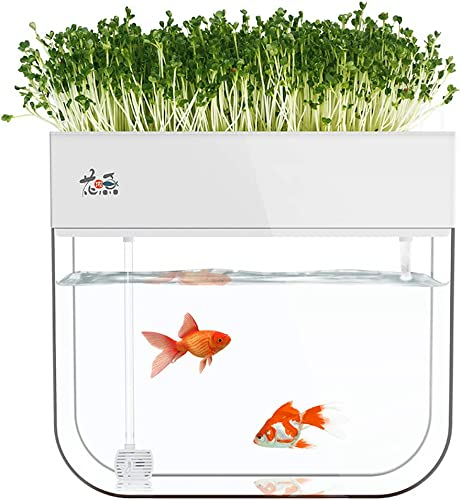 LeJoy-Garden-Aquaponic-Fish-Tank-Grow-Plants
