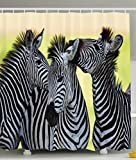zebra fabric shower curtain - Ambesonne Wildlife Animal Decor Collection, Zebras Safari Wild Nature Picture Print, Polyester Fabric Bathroom Shower Curtain Set with Hooks