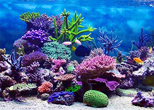 - Leowefowa 7X5FT Underwater World Backdrop Aquarium Coral Fish Blue Sea Romantic Wallpaper Wedding Travel Vinyl Photography Background Kids Children Adults Photo Studio Props