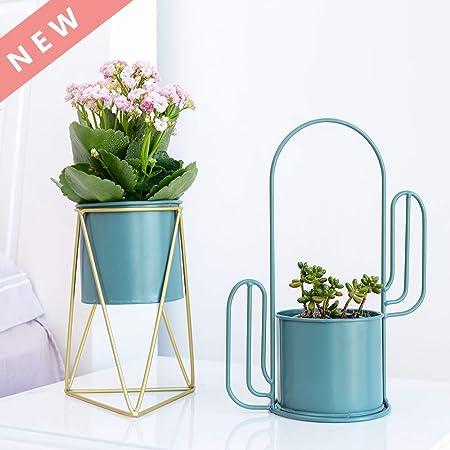 Amazon Com Plant Pot Tabletop Indoor Succulent Plant Flower Pot