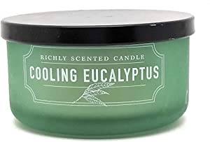 Travel Size Richly Scented Candle - 2 Wick - 4.65 oz with Lid (Cooling Eucalyptus)