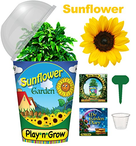 Children's Organic Plant Kit - Sunflower Window Garden - Complete Indoor Grow Set - Seeds, Soil, Planter, Greenhouse Dome, Water Tray & Cup, Growing Guide, Diary. Unique Educational DIY Kid's Gift. (Childrens Seed Kit)
