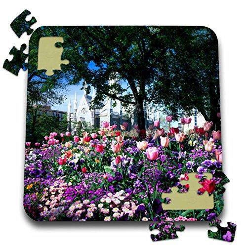 3dRose Danita Delimont - Utah - Temple Square, Wasatch Front, SALT LAKE CITY, UTAH - US45 SSM0148 - Scott T. Smith - 10x10 Inch Puzzle ()
