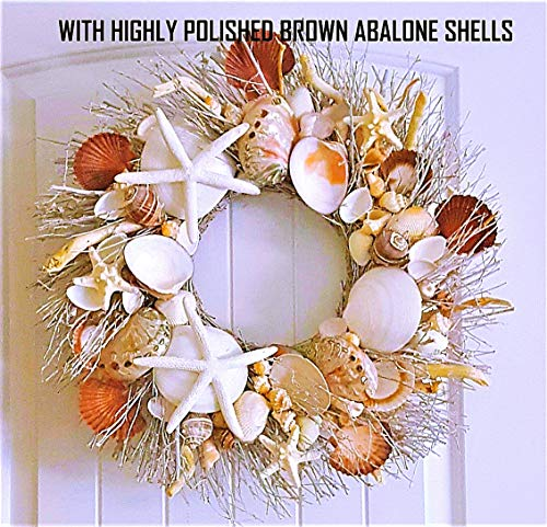 "21"" Sea Shell Wreath on Birch Twig with Highly Polished Abalone Shells in 2 Designs"