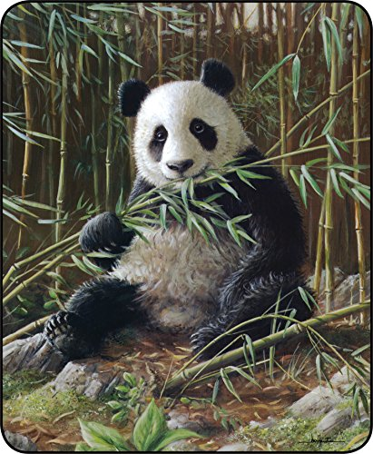 regal 50 x 60 inch licensed plush throw blanket panda home garden linens bedding bedding. Black Bedroom Furniture Sets. Home Design Ideas