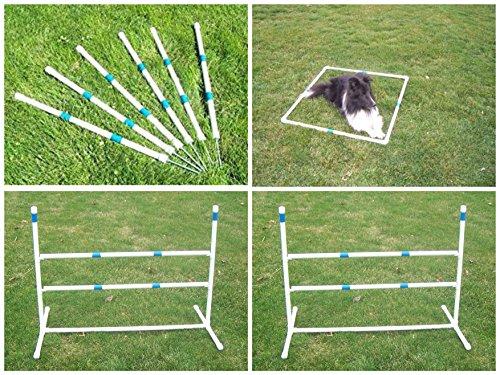 Dog Agility Starter Kit Obstacle - 6