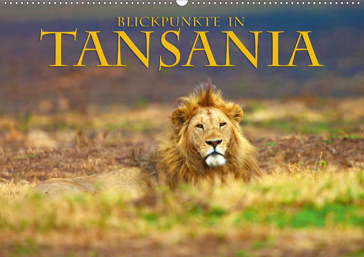 Blickpunkte Tansanias  Wandkalender 2020 DIN A2 Quer   Eine Bilderreise Zu Naturschätzen Tansanias  Monatskalender 14 Seiten    CALVENDO Natur