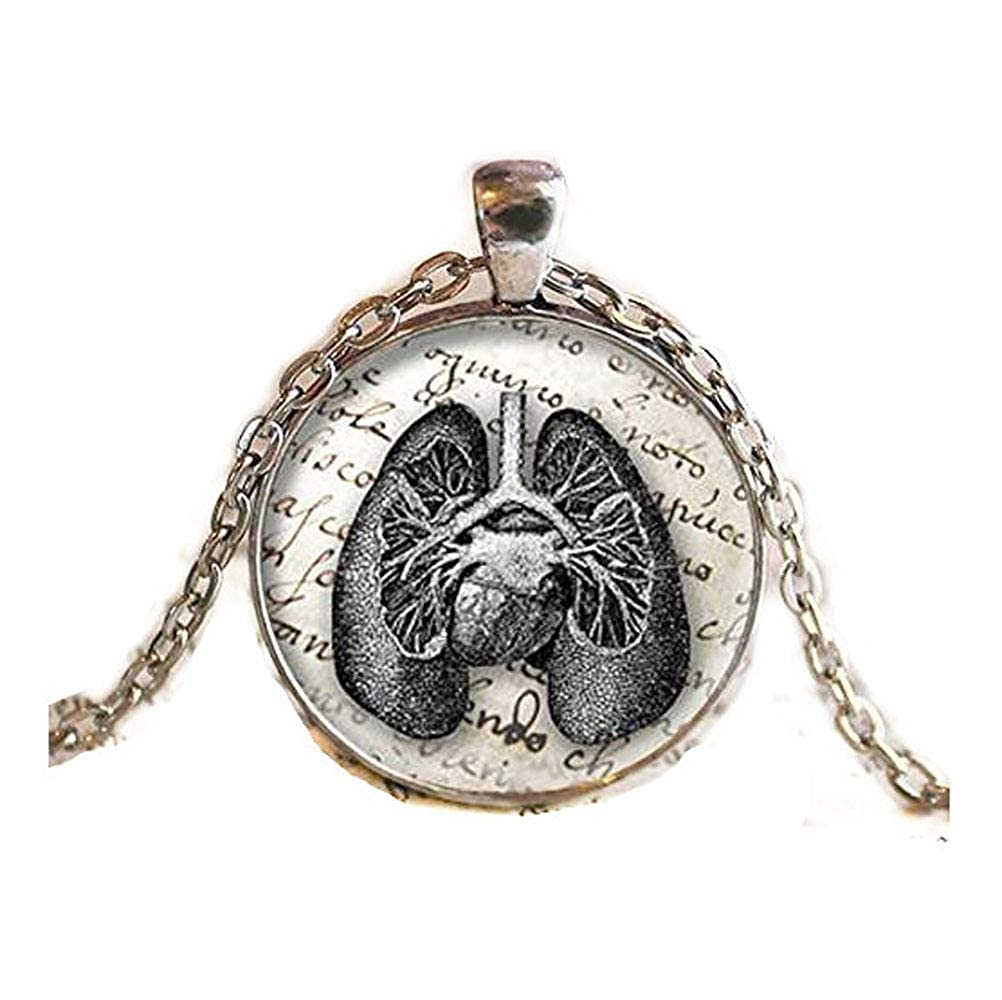 Amazon Antique Lungs Diagram Pendantnecklace Jewelry Lungs