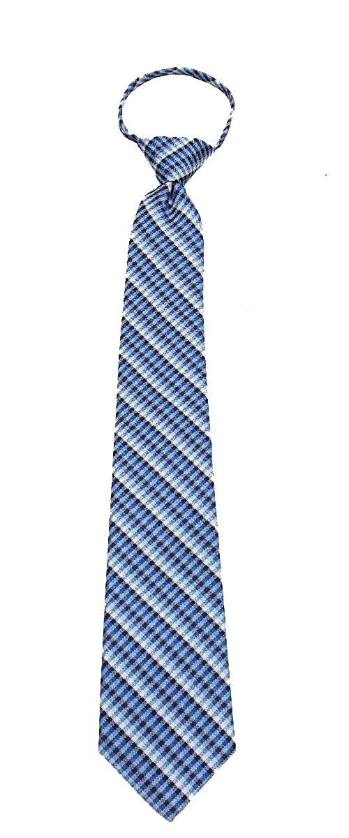 The Perfect Necktie ACCESSORY メンズ US サイズ: One Size カラー: ブルー B07BSRS8NF
