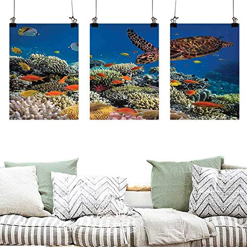 Agoza Modern Decorative Painting Ocean Fishes Old Turtle Hawksbill Floats Under Water Coral Reefs Dahab Red Sea A for Your Relatives and Friends 3 Panels 24x47inchx3pcs Blue Orange and Brown