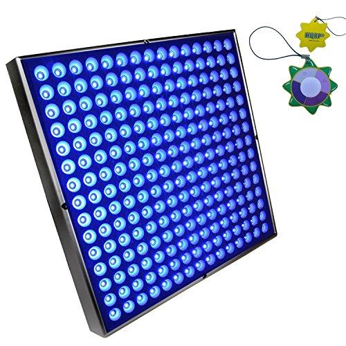 225 High Power Blue Lamp Led Plant Grow Light Panel in US - 7