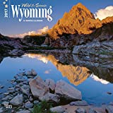 Wyoming, Wild & Scenic 2017 Square (Multilingual Edition)