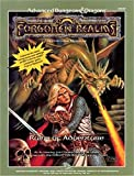 img - for Ruins of Adventure (AD&D/Forgotten Realms Module) book / textbook / text book
