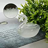 Storm Glass Weather Predictor,Small Swan Shape Crystal Weather Forecast Glass Storm Bottle for Home Office Decoration
