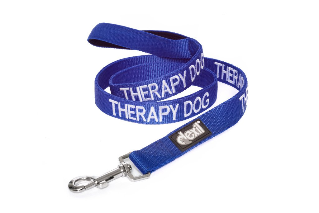 4ft 48inch THERAPY DOG bluee color Coded 2 4 6 Foot Padded Dog Leash PREVENTS Accidents By Warning Others of Your Dog in Advance (4ft)