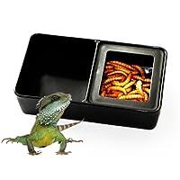 Greenlans schwarz Kunststoff Pet Insekten Reptile Breeding Lebendfutter Feeding Box zwei Fach Feeder