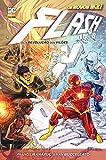 Flash - A Revolução dos Vilões