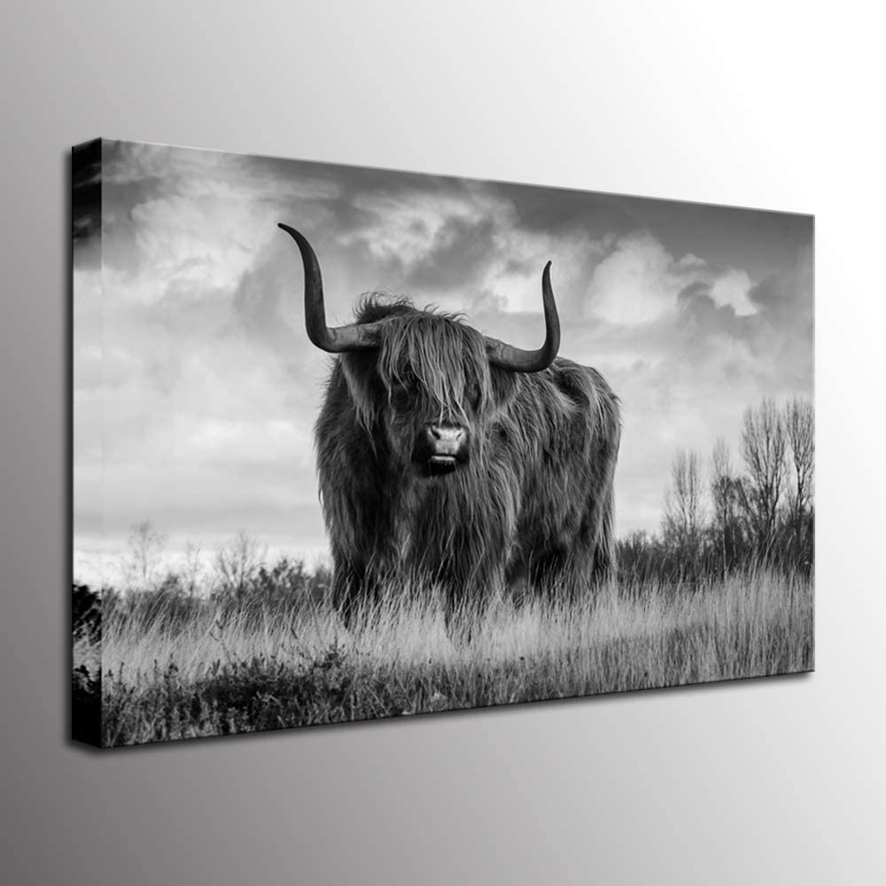 Biuteawal - Wild Animal Canvas Art Print American Highland Cow in Yellowstone National Park Picture Painting Black and White Wall Art for Home Office Decoration