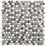 SomerTile FSHCOMLU Juno Penny Round Luna Porcelain Floor and Wall Tile, 11.25'' x 11.75'', Grey/White