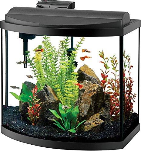 Aqueon Deluxe LED Bow Front Aquarium Kit Black 16 Gallon by Aqueon